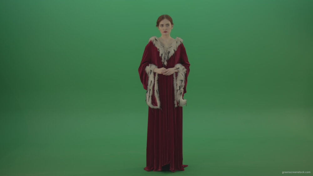 vj video background Young-actress-dressed-in-royal-dress-showing-different-scenes_003