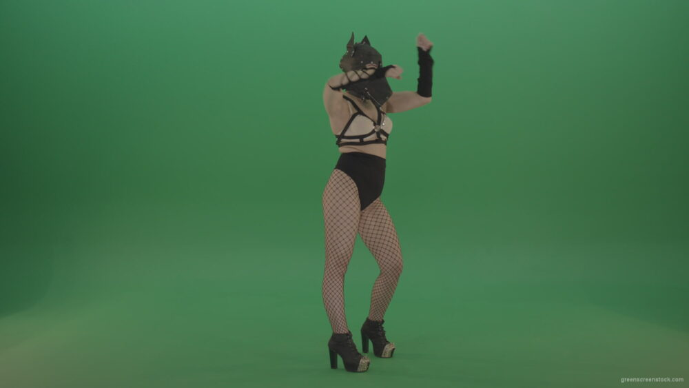 vj video background EDM-Girl-in-Wolf-Mask-making-fight-beats-on-green-screen_003