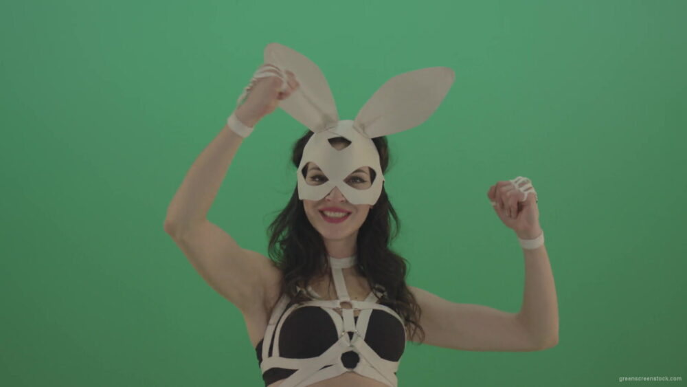 vj video background Kombat-Beat-Fist-by-Bunny-Rabbit-Girl-over-Green-Screen-1920_003