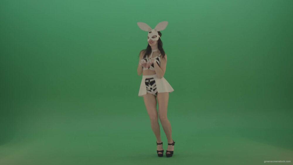 vj video background Rotating-jumping-rabbit-dancing-go-go-Girl-over-Green-Screen-1920_003