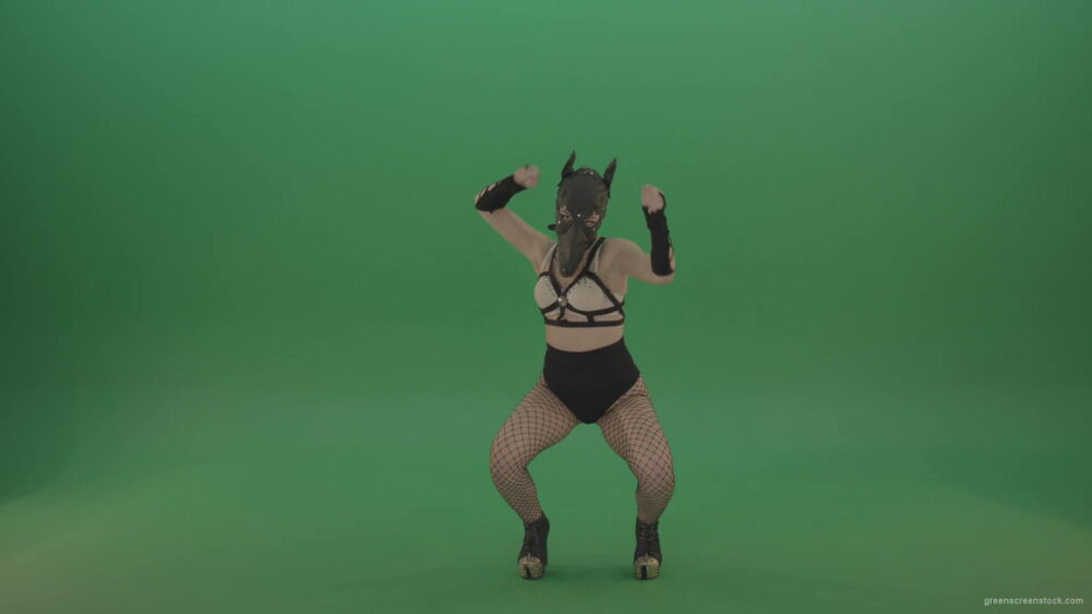 vj video background Girl-in-wolf-fetish-mask-sit-down-and-stand-up-making-hand-beat-on-green-screen-1920_003