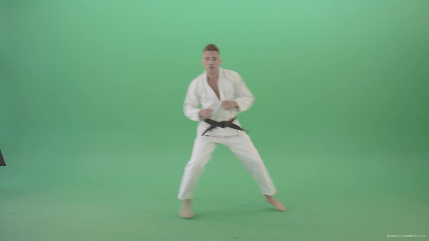 vj video background Jujutsu-Sportman-make-front-kick-and-punch-isolated-on-green-screen-4K-Video-Footage-1920_003