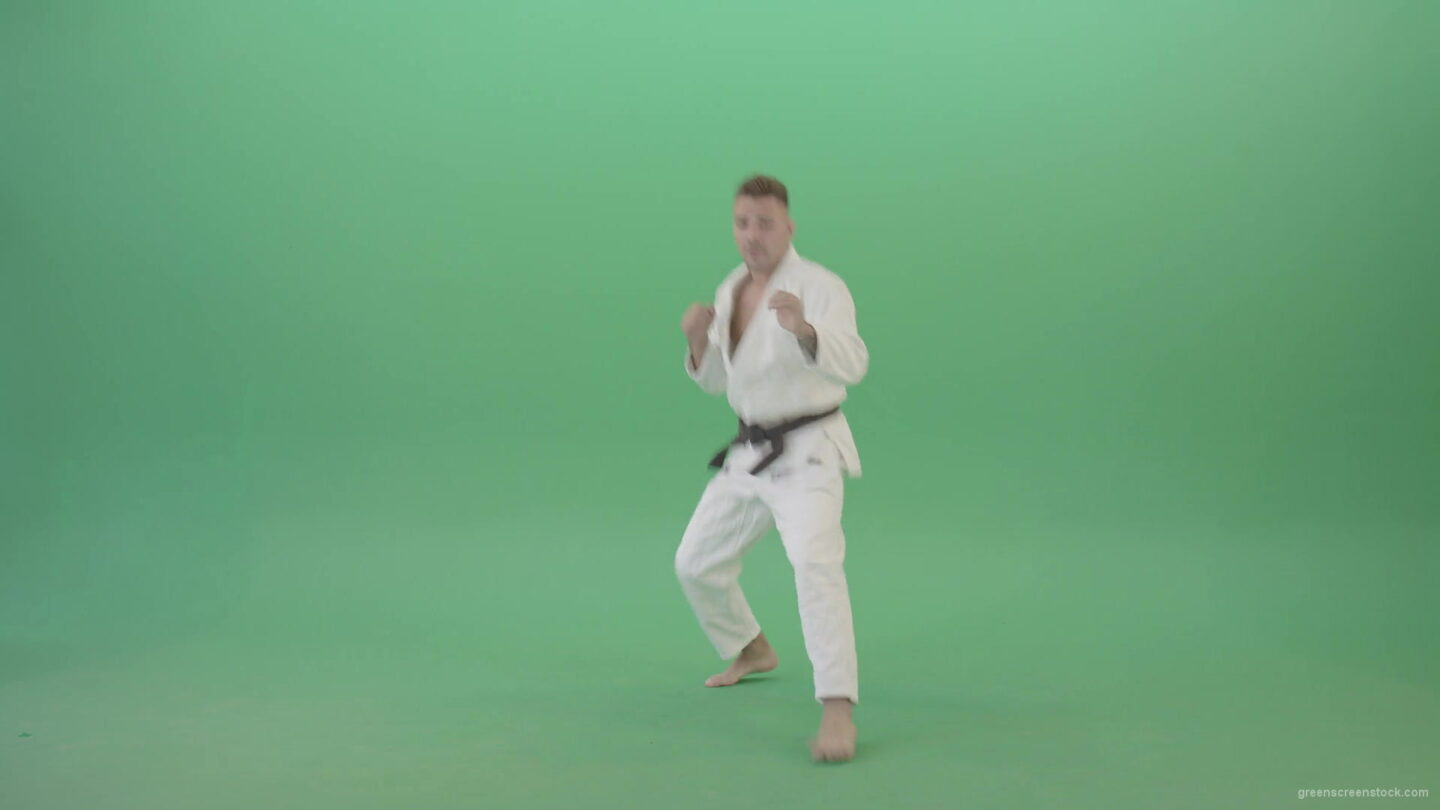 vj video background Karate-man-fight-front-vie-kick-punch-isolated-on-green-screen-4K-Video-Footage-1920_003