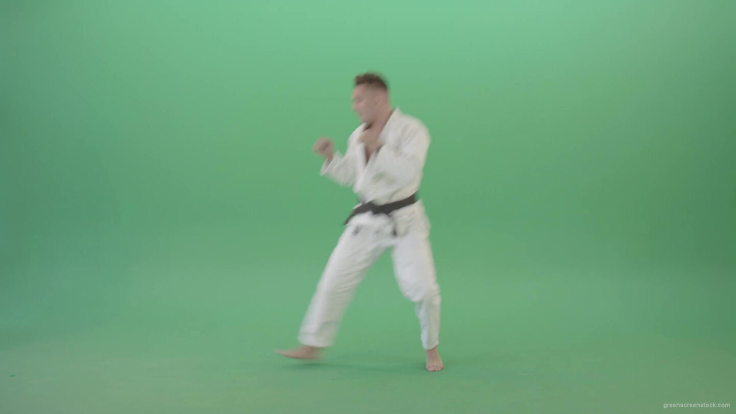 vj video background Karate-man-fighting-with-shadow-on-side-view-isolated-on-green-screen-4K-Video-Footage-1920_003