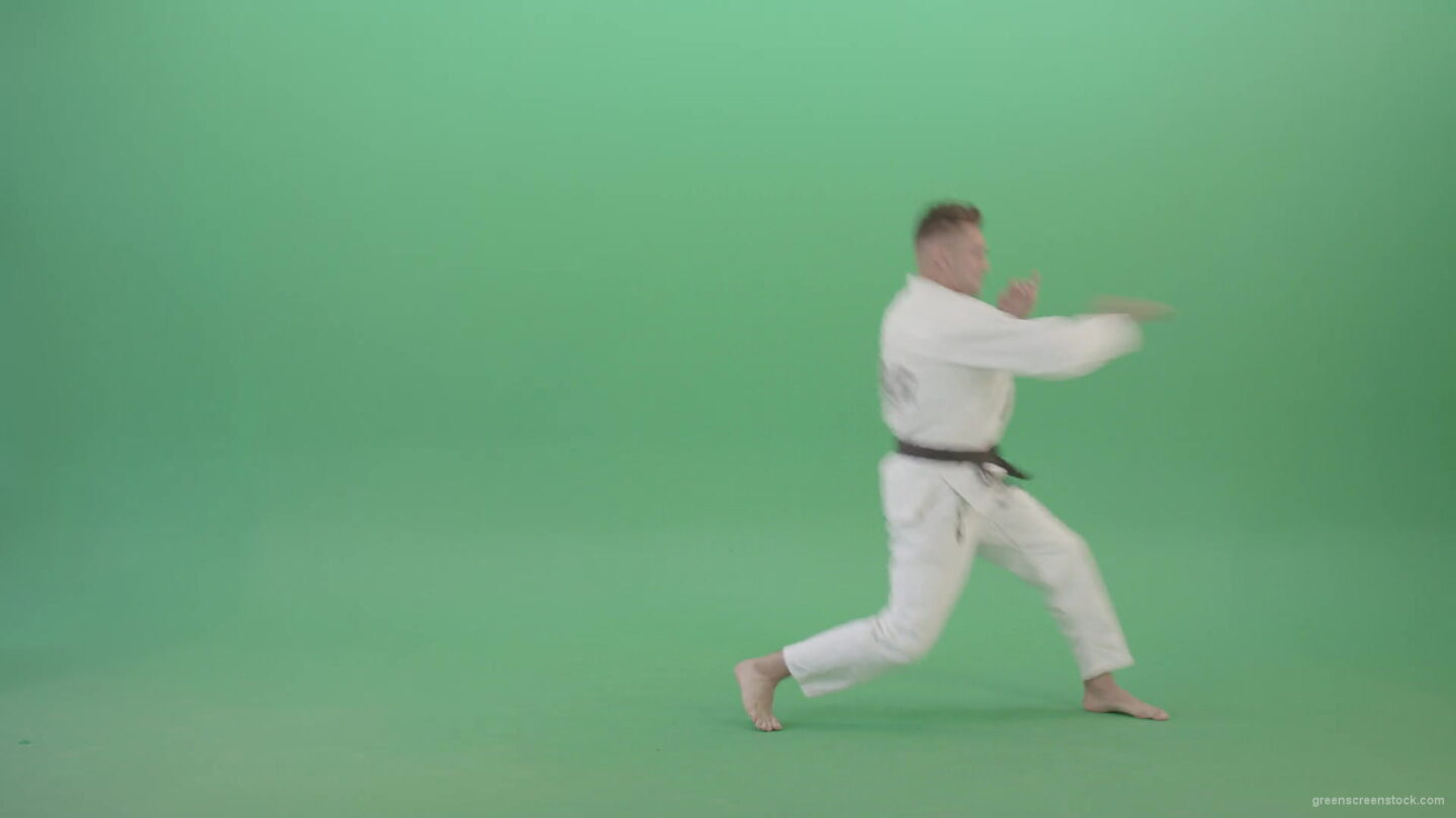 vj video background Kick-Fight-Karate-Man-isolated-on-Green-Screen-Side-view-4K-Video-Footage-1920_003
