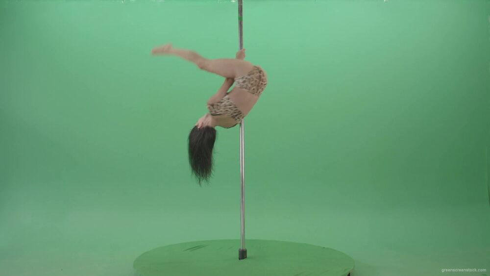 vj video background Adult-female-model-sport-girl-in-leopard-underwear-spinning-on-pilon-over-Green-Screen-4K-Video-Footage-1920_003