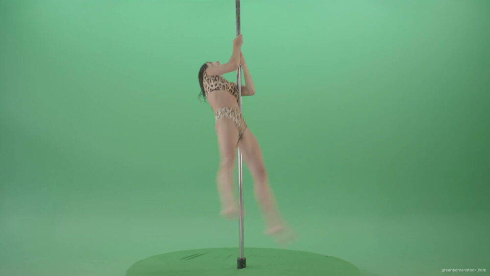 vj video background Athletic-sexy-female-model-spinning-on-pilon-in-jaguar-skin-underwear-dancing-pole-dance-on-Green-Screen-4K-Video-Footage-1920_003