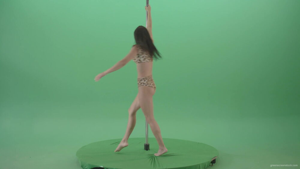 vj video background Glamor-girl-in-leopard-underwear-dancing-on-pilon-Pole-dance-and-spinning-isolated-on-Green-Screen-Video-Footage-1920_003
