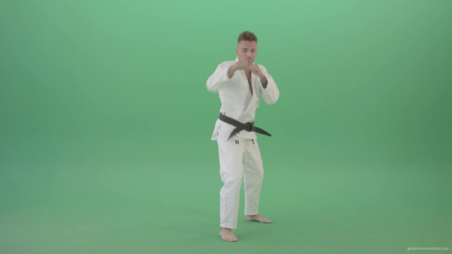 vj video background Karate-Man-boxing-making-punch-front-view-isolated-on-green-screen-1920_003