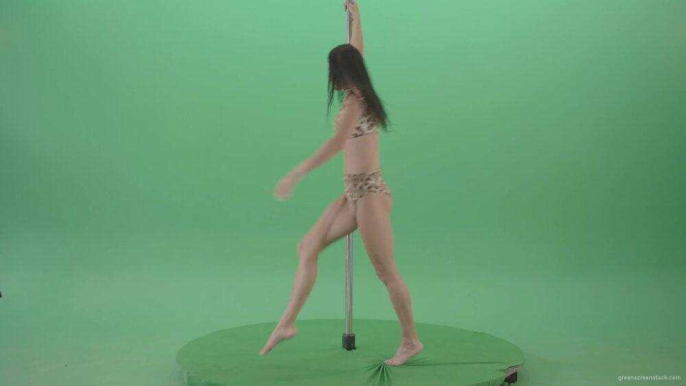 vj video background Stripteas-Girl-in-leopard-skin-wear-spinning-on-pilon-dancing-pole-isolated-on-Green-Screen-4K-Video-Footage-1920_003