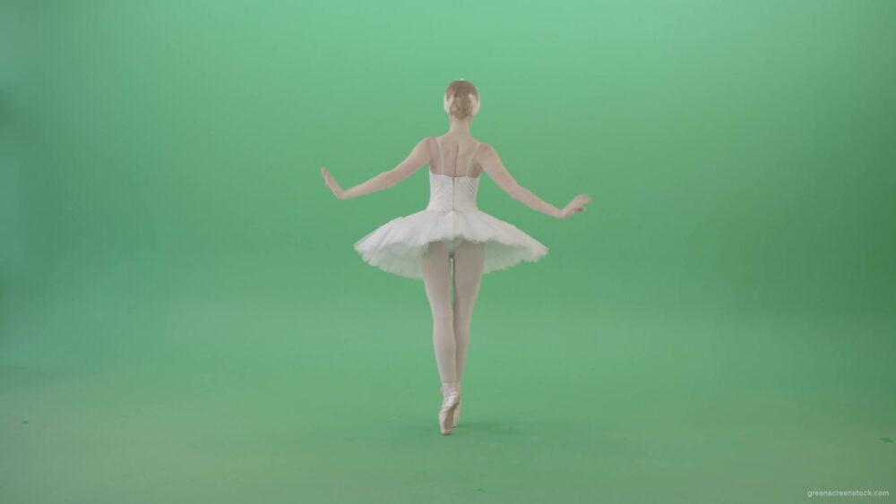 vj video background Beautiful-swan-lake-ballet-dance-ballerina-in-back-side-view-dancing-on-green-screen-4K-Video-Footage-1920_003
