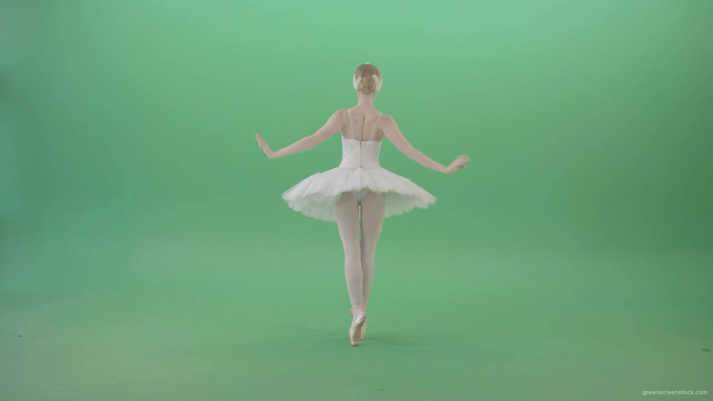 vj video background Beautiful-swan-lake-ballet-dance-ballerina-in-back-side-view-dancing-on-green-screen-4K-Video-Footage-1920_003