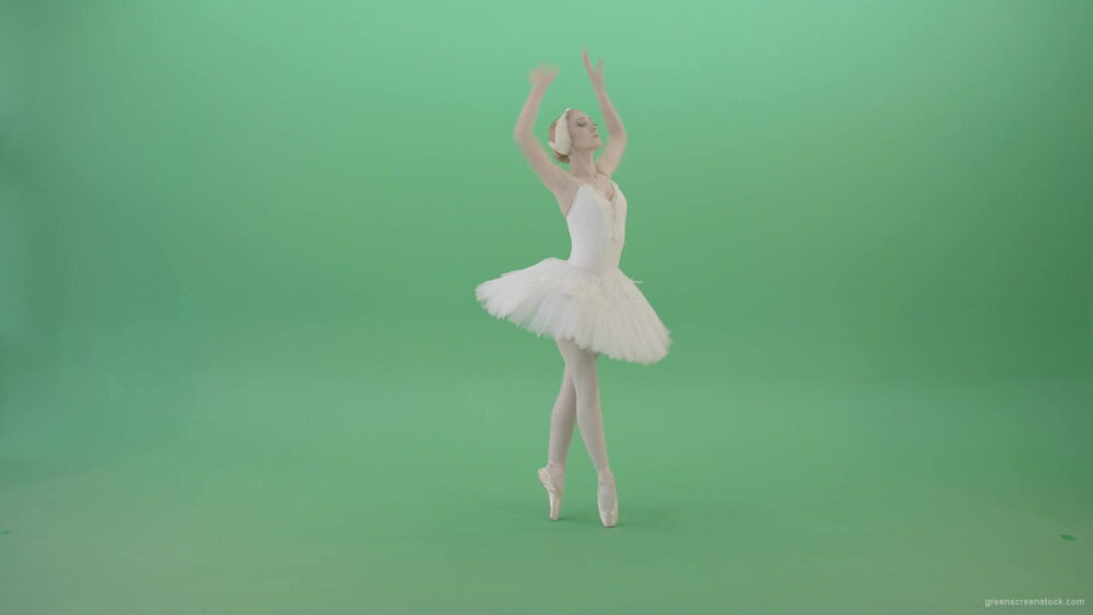 vj video background Fashion-snow-white-ballet-dancing-girl-showing-swan-lake-dance-isolated-on-Green-Screen-4K-Video-Footage-1920_003