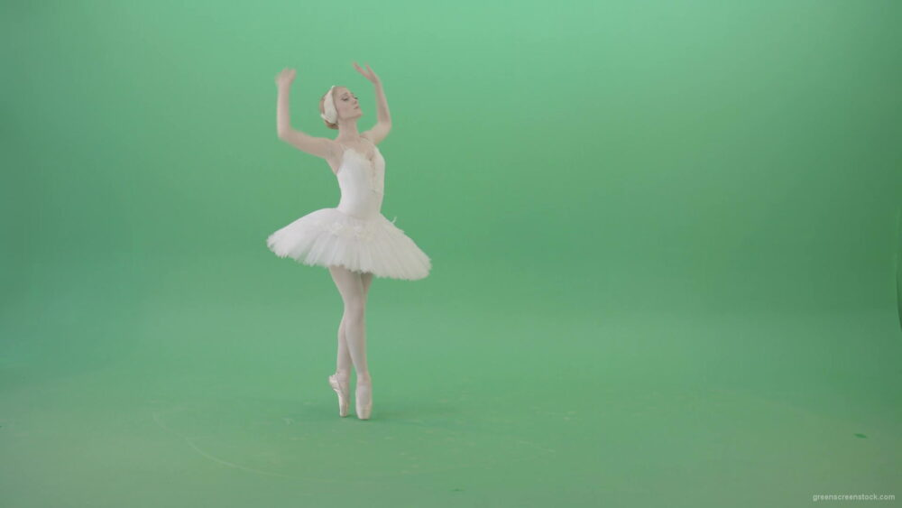 vj video background Flying-swan-laken-ballerina-dancing-with-light-on-green-screen-chroma-key-4K-Video-Footage-1920_003