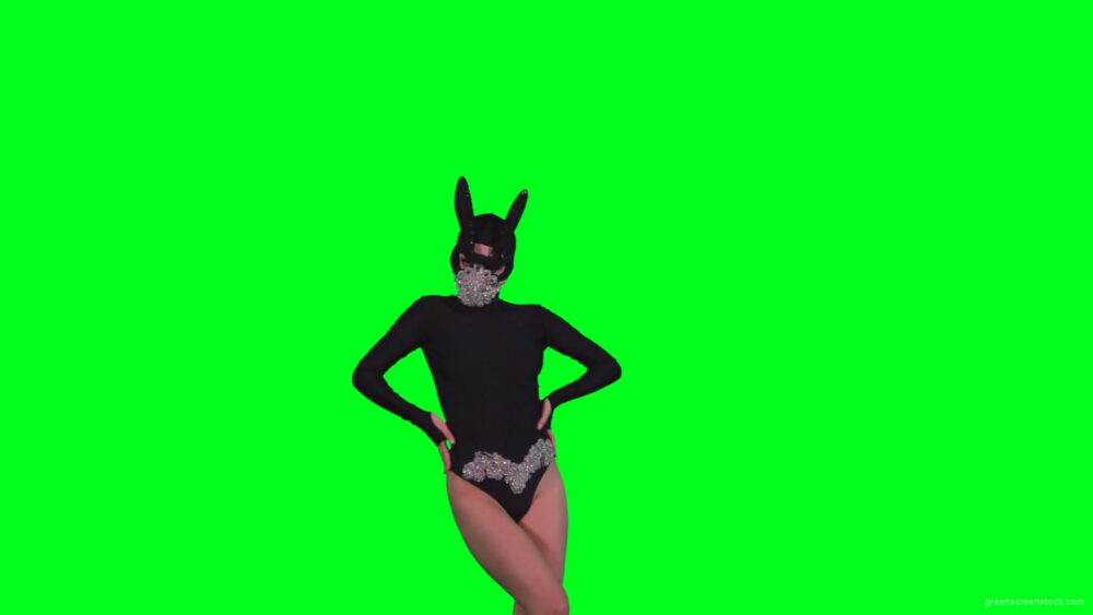 vj video background Sexy-Bunny-Girl-in-Rabbit-black-mask-chilling-with-animal-instict-isolated-on-green-screen-4K-Video-Footage-1920_003