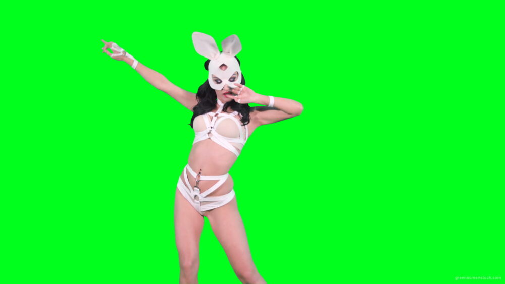 vj video background Sexy-bunny-girl-in-rabbit-costume-on-green-screen-4K-Video-Footage-1920_003